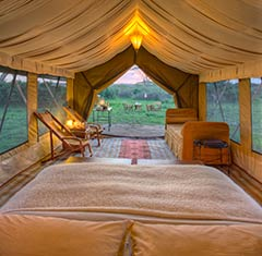 African Adventures visits the Serengeti